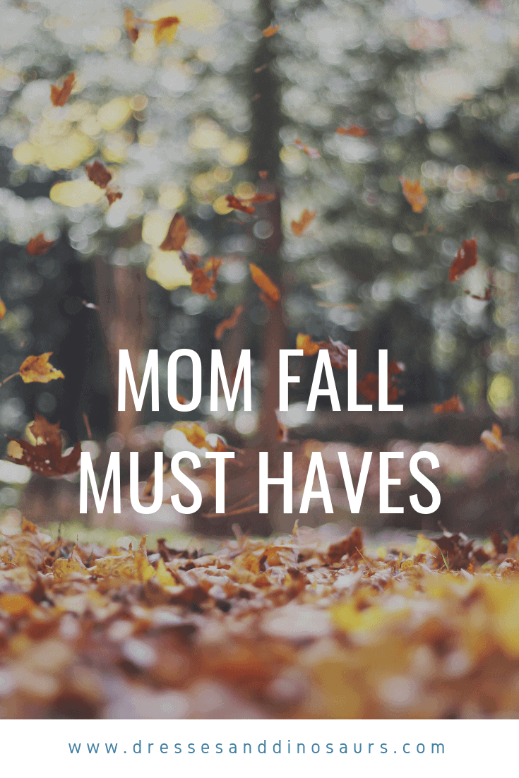 Looking for some fun fall favorites? Check these out!